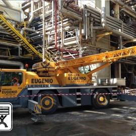 Alquiler de Grúas para Reparación de Fábricas – Ence (Huelva)